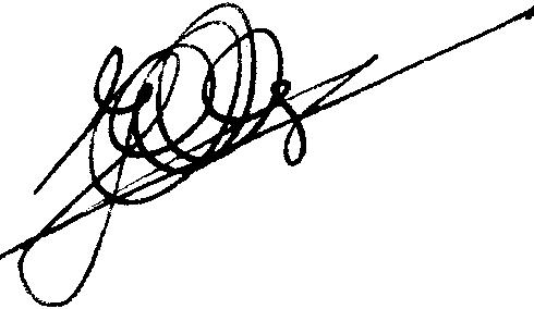 handtekening Hans Suijs